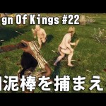Reign Of Kings 実況 #22 リアルマインクラフトに挑戦 「畑泥棒を捕まえろ」[ゲーム実況byアフロマスク]