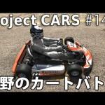 荒野のカートバトル 【Project CARS 実況 #14】[ゲーム実況byアフロマスク]