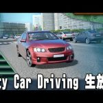 City Car Driving 生放送 「リアルなドライブシミュレーターに挑戦」[ゲーム実況byアフロマスク]