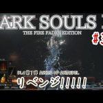 #35 ダークソウル3【DARK SOULS 3】THE FIRE FADES EDITION DLC第1弾 ASHES OF ARIANDEL DIED DIED DIED[ゲーム実況byとりてん]