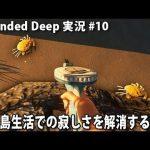 無人島生活での寂しさを解消する方法 【 Stranded Deep 実況 #10 】[ゲーム実況byアフロマスク]