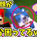 【200円マイクラ】ワンちゃんがペットになったら顔が…w【Mini World: Block Art実況】2[ゲーム実況by赤髪のとも]