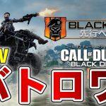 斬新なバトロワゲームが来たのでさっそくプレイしてみた!【Call of Duty: Black Ops 4 Private Beta】[ゲーム実況byY 黒騎士]