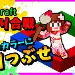 【マイクラ】殴りゴリラの誕生!ほぼドツキ合いのバトル!【color cube】[ゲーム実況byあしあと]