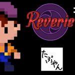 #6 レヴェリ Reverie【スイッチ】【たぶやん】[ゲーム実況byたぶやんのレトロゲーム実況]