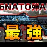 【MW実況】高火力AUGに『5.56 NATO弾』がマジで強すぎる!!これ強化されたってマジ!?w[ゲーム実況byらいりー【実況】]
