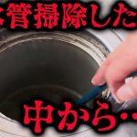 《実話》排水管掃除したら中から出てきたものがやばかった……(#20)【コープスパーティー BR】[ゲーム実況byBelle]