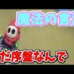 【実況】マリオカート8でたわむれる part3[ゲーム実況byシンのたわむれチャンネル]