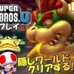 【WiiU】NewスーパーマリオブラザーズU 実況プレイ #5(最終回)【生放送】[ゲーム実況byMOTTV]