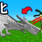 【マインクラフト】パラソルが全てのドラゴンを味方にする #24 ゴルゴンの力 【マイクラ】[ゲーム実況byねが]