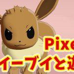 【Pixel4】ポケモンたちとMotion Senseで遊ぶ!【日本配信開始】[ゲーム実況byKiDDのゲーム実況プレイ]