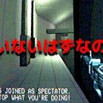 もう誰もプレイしていない昔のオンラインゲームをプレイしたら謎のチャットが流れ始めた…[ゲーム実況byポッキー]