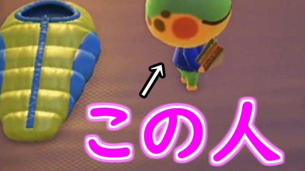 あつ 森 キャンプ サイト ゲーム
