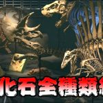 化石コンプリートしたので全種類紹介します #40【あつまれ どうぶつの森】[ゲーム実況byアブ ]