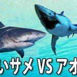 【Maneater #4】巨大な人喰いサメとアオザメの激しい戦い【アフロマスク】[ゲーム実況byアフロマスク]