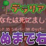 【テラリア(terraria)実況#5】2Dドットなマイクラ風ゲーム、死ぬまで右へ[ゲーム実況byトオサカ]