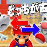 【マリオメーカー2】クイズどっちが古いでSHOW! Super Mario Maker 2[ゲーム実況byだいだら]