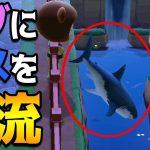ドブ川にサメをポイッ。近づいた住民は死ぬ。 #61【あつまれどうぶつの森】[ゲーム実況byコアラ's]