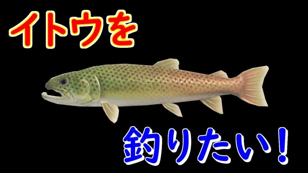 魚 あつ森 売値