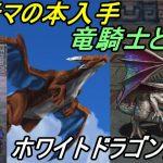 ファイナルファンタジー2 #20【スマホ版】 アルテマの本入手 竜騎士と飛竜 ホワイトドラゴン出現 kazuboのゲーム実況[ゲーム実況bykazubo ゲーム攻略チャンネル]