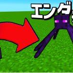 【マイクラ】パラソルがクモになって世界を征服する #3 エンダーマンの蜘蛛【マインクラフト】[ゲーム実況byねが]
