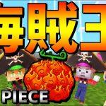 【マイクラ】海賊王決定戦!7つの宝を奪い合え!ep1【ワンピースMOD】[ゲーム実況byあしあと]