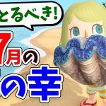 【あつ森】7月にとれる海の幸を全て紹介!レアな海の幸をとるコツや買取値段、魚影、出現時間などを解説!しんじゅやダイオウグソクムシの捕まえ方はこれだ【あつまれどうぶつの森 7月の海の幸コンプリート】[ゲーム実況byころな Corona Games]
