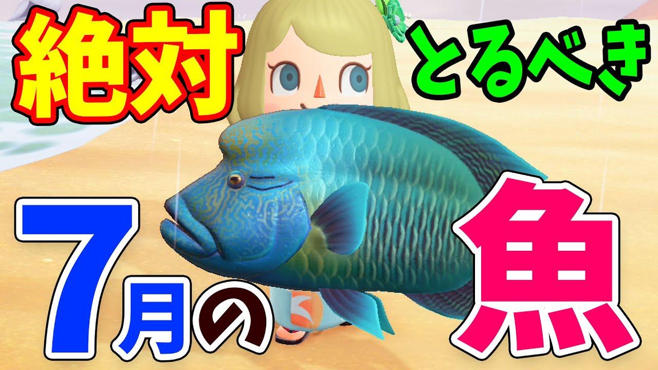 あつ森 7月 魚 値段