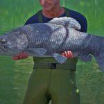 【The Catch】リアルに再現された巨大魚を狙う最新の釣りシミュレーターゲーム【アフロマスク】[ゲーム実況byアフロマスク]